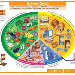 Image for The Eatwell Guide